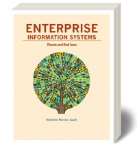Enterprise Information Systems: Theory and Cases 1e - Loose-Leaf
